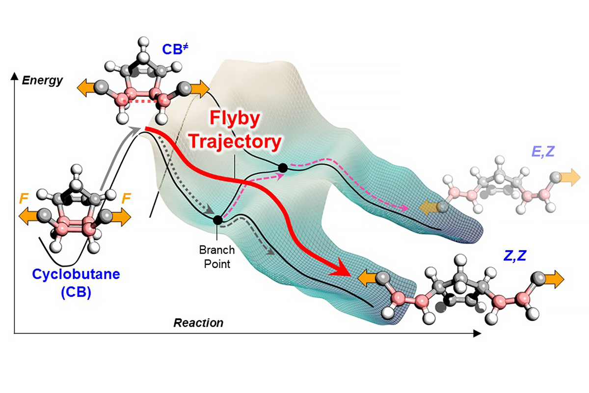 Illustration of the movement of a molecule across the energy landscape