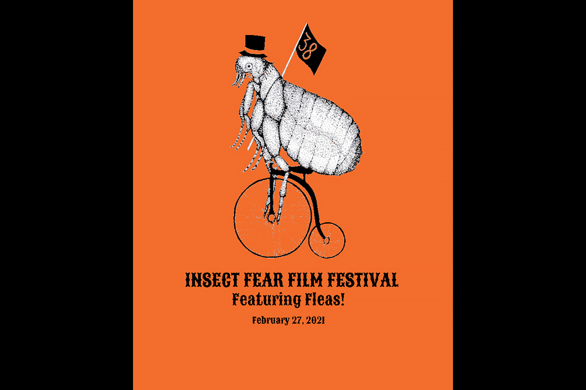 Image of Insect Fear Film Festival poster with a flea riding a penny-farthing.