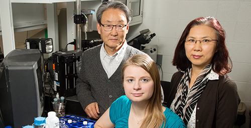 "Illinois professor Kyekyoon ""Kevin"" Kim, graduate student Elizabeth Joachim and research scientist Hyungsoo Choi developed tiny gelatin nanoparticles that can carry medication to the brain, which could lead to longer treatment windows for stroke patients."