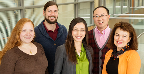 Illinois researchers developed a platform to grow and study neuron cells using tiny rolled microtubes. Pictured, left to right: Olivia Cangellaris, Paul Froeter, professor Xiuling Li, Wen Huang and professor Martha Gillette.