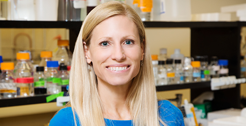 University of Illinois kinesiology and community health professor Marni Boppart studies the mechanisms that enable muscles to recover and grow stronger after exercise.