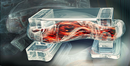 "Tiny walking ""bio-bots"" are powered by muscle cells and controlled by an electric field."