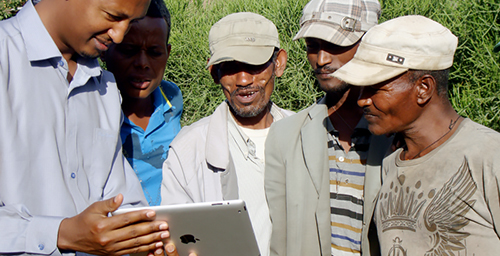 Gemechu Olana, a professor at Adama Science and Technology University, left, shares SAWBO animations with Ethiopian farmers.