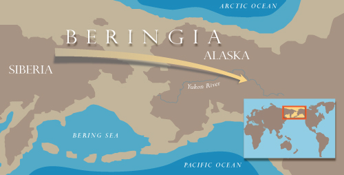 Genetic evidence in the new study supports the hypothesis that the first people in the Americas all came from northeast Asia by crossing a land bridge known as Beringia. When sea levels rose after the last ice age the land bridge disappeared.