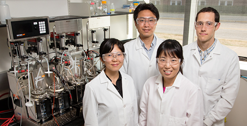 University of Illinois food science and human nutrition professor Yong-Su Jin, left rear, and, clockwise, graduate student Josh Quarterman, EBI fellow Soo Rin Kim and postdoctoral researcher Na Wei engineered yeast to consume acetic acid and xylose simultaneously, improving ethanol yield from lignocellulosic sources (plant stems and other structural parts).