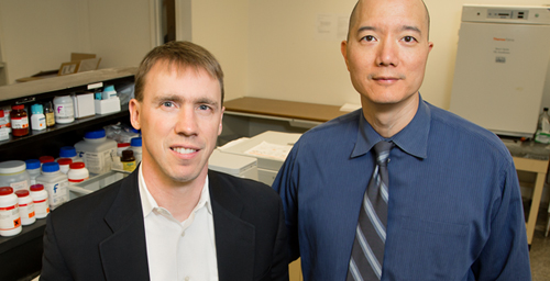 University of Illinois chemistry professor Paul Hergenrother, left, and veterinary clinical medicine professor Tim Fan led a study of an anti-cancer compound in pet dogs that is now headed for human clinical trials.