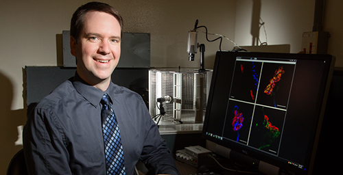 A new study by University of Illinois speech and hearing sciences professor Aaron Johnson and colleagues at the University of Wisconsin shows that the vocal training of older rats reduces some of the voice problems related to their aging. The researchers hope that in the future, this animal model will lead to voice therapy for aging humans to help improve their quality of life.