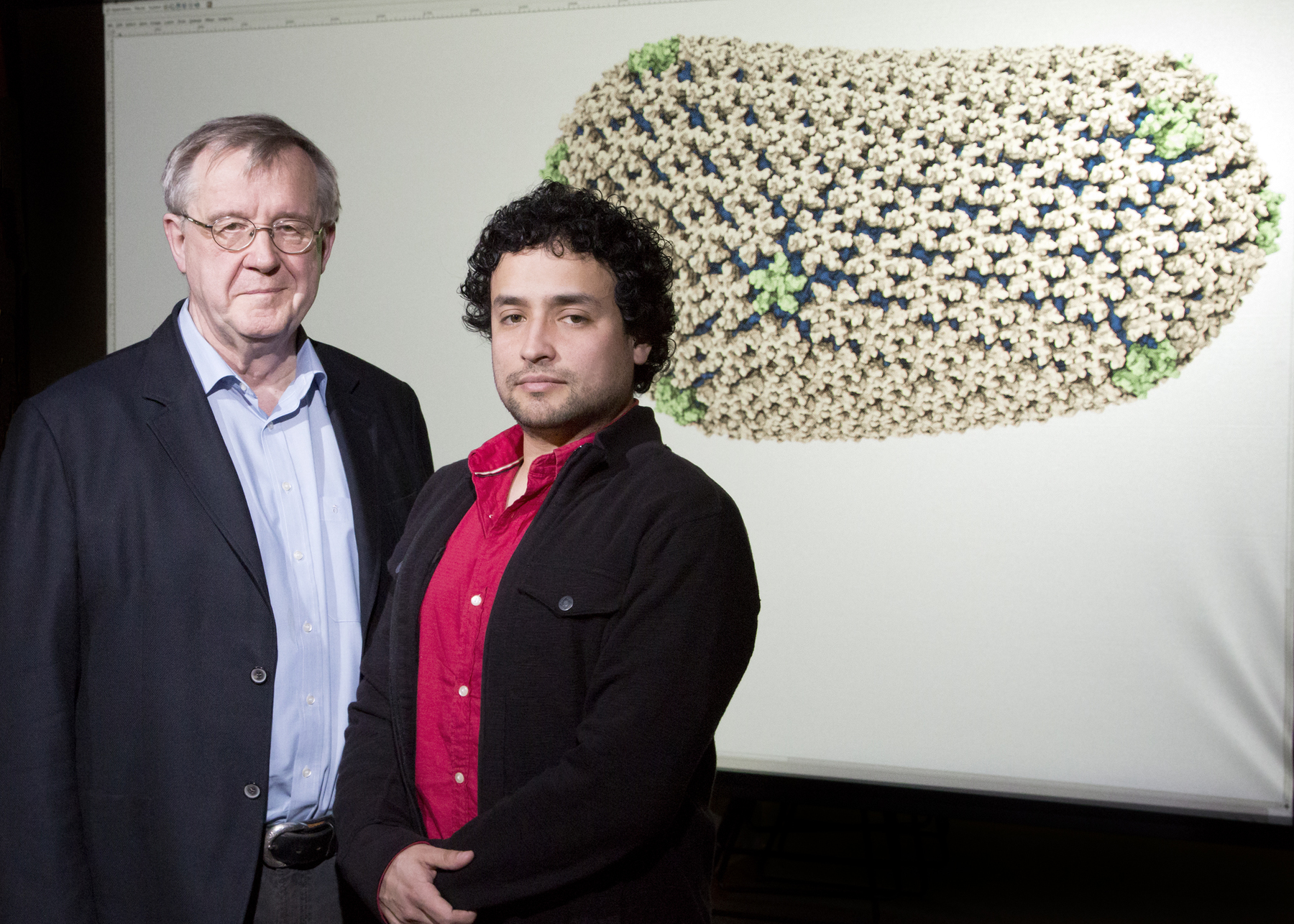 Physics professor Klaus Schulten, postdoctoral researcher Juan R. Perilla and their colleagues used experimental data and computer simulations to determine the chemical structure of the HIV capsid.