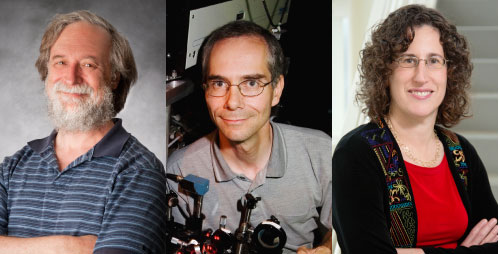 The newest Illinois faculty members named to the National Academy of Sciences are from left, Eduardo Fradkin, physics, and Martin Gruebele and Sharon Hammes-Schiffer, chemistry.