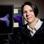 Chemical and biological engineering professor Mary Kraft led the research team.