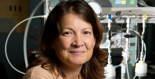 Civil and environmental engineering professor Tami Bond and colleagues say that reducing the use of kerosene lamps is a quick way to reduce global warming.