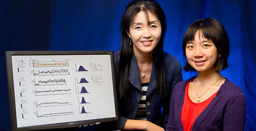 Researchers from the University of Illinois - professor Sua Myong, left, and graduate student Helen Hwang - determined the action of proteins that regulate the caps on the ends of DNA strands, creating an assay that could be used to screen anti-cancer drugs.