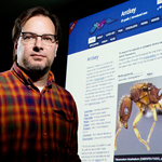 Professor Andy Suarez facilitated the creation of the Antkey website, pictured behind him, which makes ant identification easier for non-specialists.
