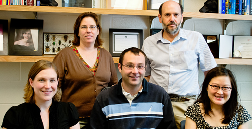 Researchers have discovered small molecules that inhibit polyphosphate, a compound important for blood clotting. The group included, from left, Julie Collins, a research specialist in health sciences; Stephanie Smith, a research professor of biochemistry; Richard Travers, a biochemistry graduate student; James H. Morrissey, a professor of biochemistry; and Sharon Choi, a predoctoral fellow in biochemistry. Morrisey led the study and the new analysis.