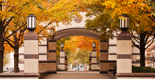 The stunning fall color of yesteryear at the Beckman Institute may not return this year after the summer drought.