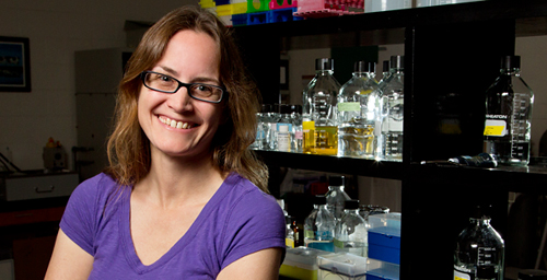 Illinois veterinarian and pathobiology professor Amy MacNeill and her colleagues discovered that an altered myxoma virus infects and kills dog cancer cells but not healthy cells in cell culture.