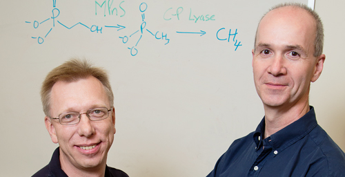 University of Illinois chemistry professor Wilfred van der Donk (left), microbiology professor William Metcalf and their colleagues discovered the origin of much of the methane in the oxygen-rich regions of the ocean.