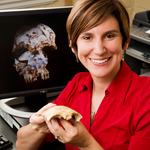 University of Illinois anthropology professor Laura Shackelford and her colleagues uncovered a fossil skull that rewrites the history of modern human migration in Southeast Asia.