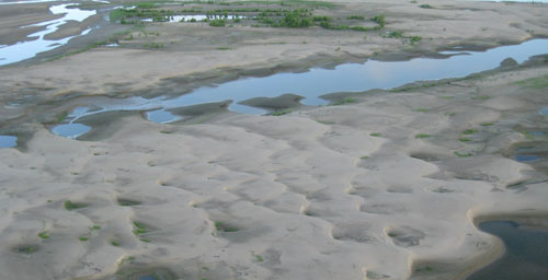 Sand deposits were worked into trains of dunes when flood water flowed into the Bonnet Carr Spillway in Lousiana. Once the flood subsided and the spillway was closed, the water drained and dried from the spillway, thereby exposing the dunes. Trees and shrubs near the top of the oblique aerial photograph provide scale.