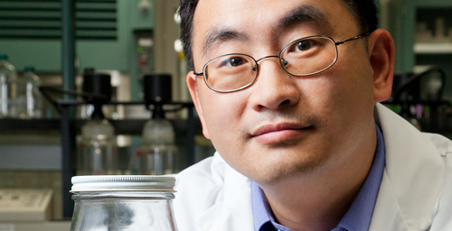 Illinois Sustainable Technology Center senior research scientist Wei Zheng and his colleagues found that estrogenic compounds in dairy waste biodegrade very slowly in the absence of oxygen.