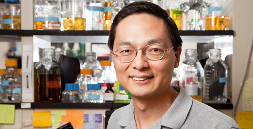 Professor Huimin Zhao, whose research explores biosynthetic tools for drug and energy development, was awarded a 2012 Guggenheim Foundation Fellowship.
