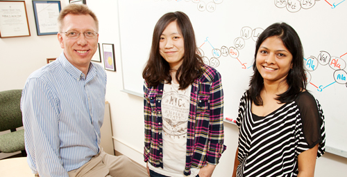 Illinois chemists - Wilfred van der Donk and graduate students Weixin Tang, left, and Neha Garg - discovered a molecule very similar to the antibiotic nisin, found naturally in milk and added to food for decades to fight pathogenic bacteria. The new molecule, geobacillin, is more stable than nisin, which could make it more effective.