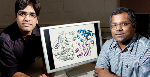 University of Illinois biochemistry professor Satish Nair, right, and graduate student Vinayak Agarwal and their colleagues discovered the mechanism by which some bacteria evade a potent antibiotic.