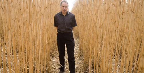 University of Illinois crops sciences and Institute for Genomic Biology professor Stephen Long is leading the effort to engineer new crops to ramp up production of biodiesel and plant-based jet fuels.