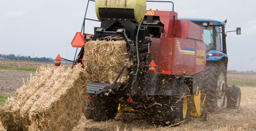 Among the many variables the new computer model takes into account, harvest timing and technology is key. Here a traditional baler is used to harvest Miscanthus x giganteus, a tall perennial grass that can be harvested in late fall or winter.
