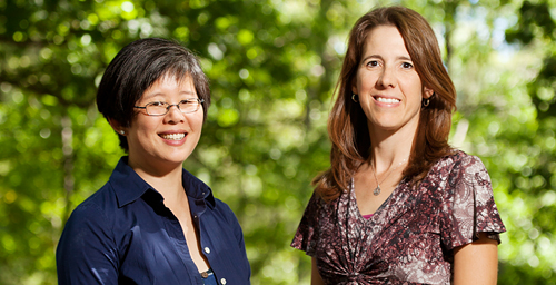 University of Illinois natural resources and environmental sciences professor Frances (Ming) Kuo, left, and crop sciences visiting teaching associate Andrea Faber Taylor found that children with ADHD who routinely spent time outdoors in green settings had milder symptoms than those who regularly played indoors or outdoors in built environments.