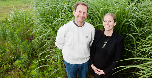 University of Illinois plant biology and Energy Biosciences Institute professor Evan DeLucia, EBI feedstock analyst Sarah Davis and their colleagues found that replacing the least productive corn acres with miscanthus would boost both corn and biofuel production.
