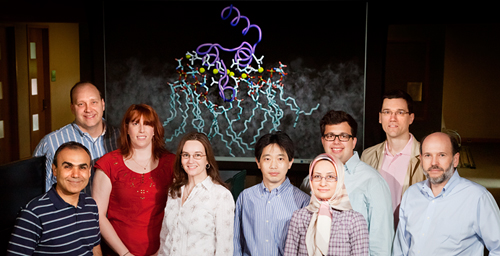 An interdisciplinary collaboration at the University of Illinois led to a breakthrough in understanding blood clotting. Researchers on the study were (from left): Emad Tajkhorshid, Chad Rienstra, Mary Clay, Rebecca Davis-Harrison, Zenmei Ohkubo, Narjes Tavoosi, Mark Arcario, Taras Pogorelov and James Morrissey.