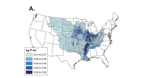 Average annual predicted January to June total P (A), dissolved reactive P (B), and particulate P (C) yields for the counties in the Mississippi River basin from 1997 to 2006.