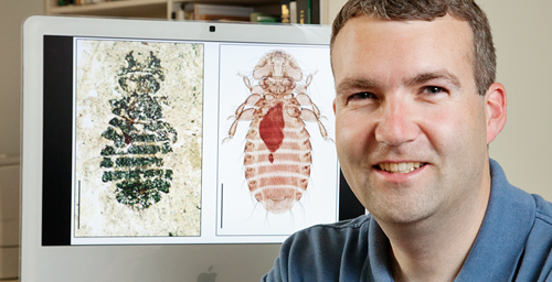 Kevin Johnson, an ornithologist with the Illinois Natural History Survey, led a study of fossils and molecular data to track the evolution of lice and their hosts.