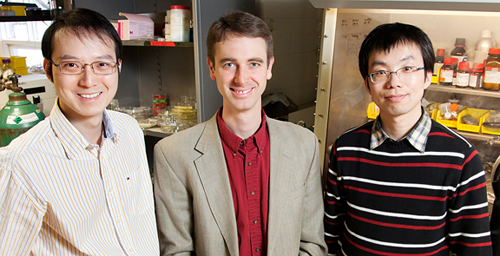 Paul Braun, professor of materials science and engineering, center, led the research group of graduate student Xindi Yu, left, and postdoctoral researcher Huigang Zhang that developed a three-dimensional nanostructure for battery cathodes that allows for dramatically faster charging and discharging without sacrificing energy storage capacity.