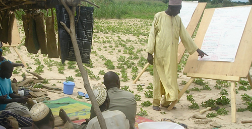 "The new animated videos will be helpful tools in a variety of educational settings, like this ""farmer field school"" in Niger."