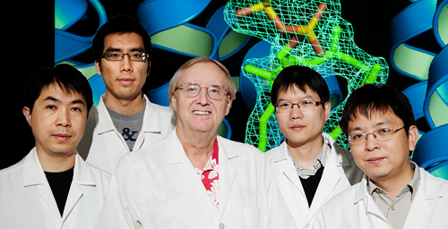 Chemists led by Illinois professor Eric Oldfield, center, determined the structure of a key enzyme that could lead to more efficient drugs to treat staph infections, parasites and high cholesterol. The research team, from left, research scientist Yonghui Zhang, graduate student Fu-Yang Lin, research scientist Rong Cao and postdoctoral associate Ke Wang.