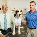 Tim Fan, a professor of veterinary clinical medicine, left, and chemistry professor Paul Hergenrother, (with a research dog, Hoover) led a study of a compound that shows promise in treating lymphoma in dogs.