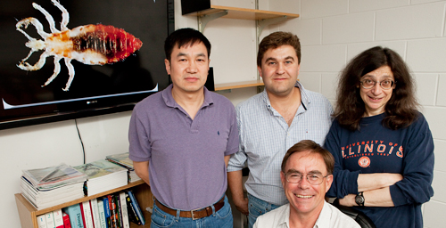University of Illinois entomology professor Barry Pittendrigh, standing center, coordinated the effort to sequence and analyze the human body louse genome. Other U. of I. researchers on the project included, from left, research scientist Weilin Sun and entomology professors Hugh Robertson and May Berenbaum. The initiative involved researchers at 28 institutions in the U.S., Australia, Europe and South Korea.