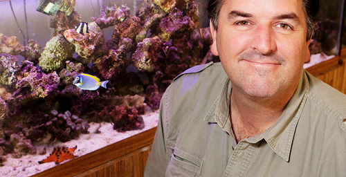 Mark Mitchell, a professor of veterinary clinical medicine, led the research team that found antibiotic-resistant bacteria in seven species of sharks and one redfish species captured in waters off Massachusetts, Florida, Louisiana and Belize.