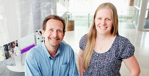 Plant biology and Energy Biosciences Institute Professor Evan DeLucia and EBI postdoctoral researcher Kristina Anderson-Teixeira developed an improved method for calculating the greenhouse gas value of ecosystems.