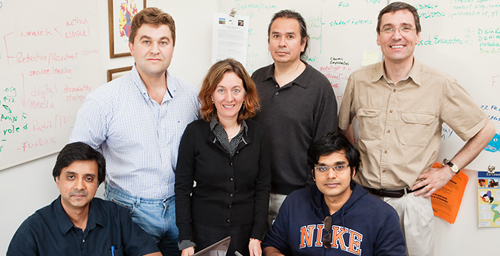 The SusDeViki team is building an interactive, peer-reviewed information-sharing website devoted to sustainable development. The team includes, standing, from left: entomology professor Barry Pittendrigh, extension specialist Julia Bello, extension employee Ricardo Diaz and extension educator Francisco Seufferheld. Seated, from left: business professor Madhu Viswanathan and MBA student Srinivas Venugopal.