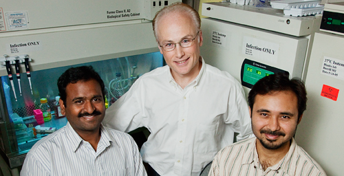 Microbiology professor Steven Blanke (center), graduate student Prashant Jain (left) and postdoctoral researcher Tamilselvam Batcha found that a factor produced by the bacterium H. pylori directly activates an enzyme in host cells that has been associated with several types of cancer, including gastric cancer.