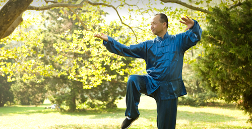Taiji master Yang Yang, an adjunct professor of kinesiology at the University of Illinois, is featured in a new, permanent exhibit at the Museum of Science and Industry in Chicago.