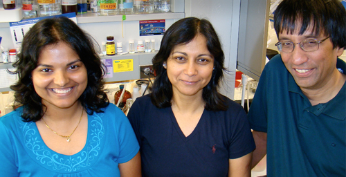 Doctoral student Amrita Das, left, with veterinary biosciences professor Indrani Bagchi and molecular and integrative physiology professor Milan Bagchi, discovered that uterine cells synthesize estrogen during pregnancy.