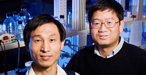 U. of I. biochemistry professor Lin-Feng Chen, right, and his colleagues, including postdoctoral researcher Xiaodong Yang, identified a novel pathway that controls the activity of a key protein involved in inflammation.