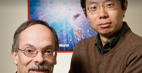 Gustavo Caetano-Anolls, a professor of bioinformatics in the department of crop sciences at Illinois, left, with postdoctoral researcher Minglei Wang, used protein structures to gain insight into evolutionary events.