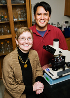 Veterinary biosciences professor Susan Schantz and graduate student Victor Wang found that rats exposed to estradiol were significantly impaired on tasks involving working memory and response inhibition.