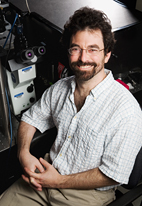 Physics professor Paul Selvin put the different models of voltage sensor movement in ion channels to the test.