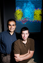 Biochemistry professor Emad Tajkhorshid and graduate student James Gumbart used two software programs developed in the U. of I.'s National Institutes of Health Resource for Macromolecular Modeling and Bioinformatics to painstakingly model a critical part of a mechanism by which bacteria take up large molecules.